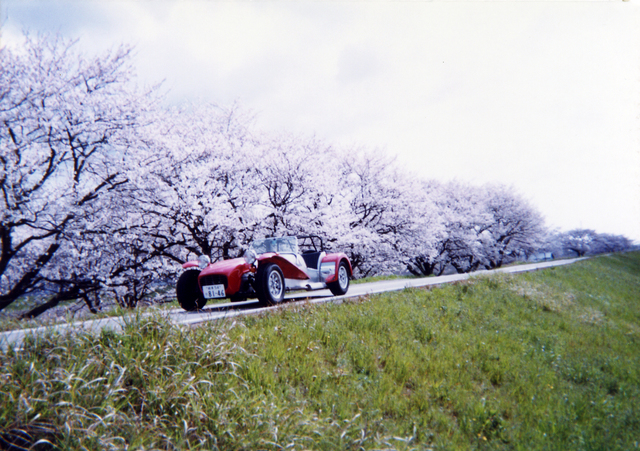 スーパー7 桜をバックに